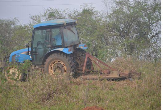 Realize serviços de roçadeira na sua fazenda