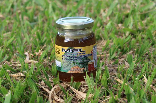 Mel composto silvestre de própolis, gengibre e eucalípto - Apiário Hervaz