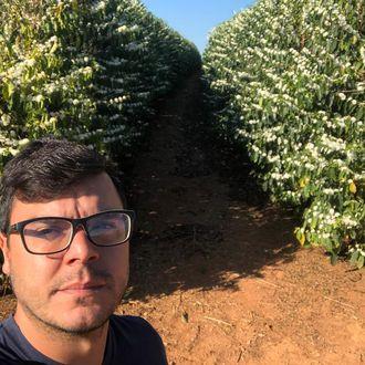 Fazenda Palestina