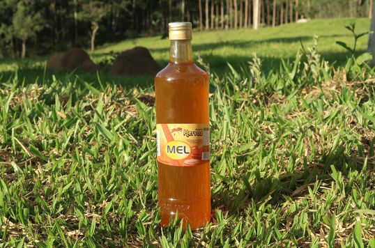 Mel silvestre na garrafa - Apiário Hervaz